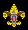 Scouts_CleanLogo-logo-BC-227x240